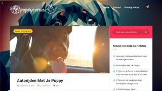 puppycursusopvoeden.nl/autorijden-met-je-puppy/