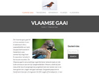 vlaamse-gaai.nl
