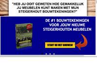 www.verdiensnelveelgeld.nl
